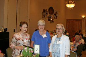 Wee Memories Community Volunteers